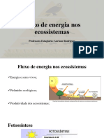 Fluxo de Energia Nos Ecossistemas (Aula 06.06.18)