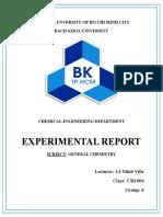 Thao Nguyen Report
