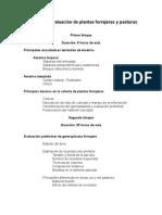 Tecnicas Evaluacion Plantas 2011