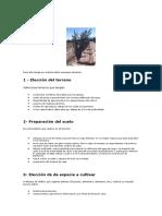 Script Tmp Documento7