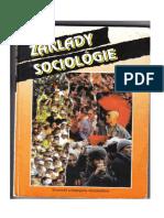 Základy sociológie