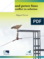Birds and Power Lines, From Conflict to Solution