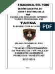 Silabo Patrullaje Policial 2018