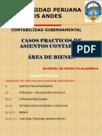 03 Casos Practicos Bienes (1)