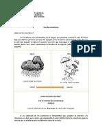 articles-27291_recurso_doc    GUIA N°1 PARA OCTAVO BASICO CONECTORES.doc