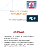 NEUROFISIOLOGÍA.