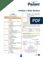 B_5ºAño_S4_Proteinas y acidos nucleicos.pdf
