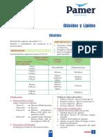 B_5ºAño_S3_Glucidos y Lipidos.pdf