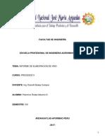 INFORME DE VINO. MAXX.docx