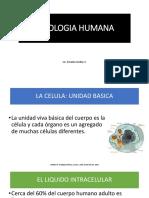 FISIOLOGIA HUMANA CLASE 1.pdf