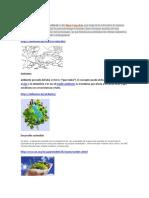 Recurso_Ambiental[1]