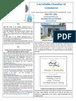 Carrabelle Chamber of Commerce E-Newsletter for June 22nd