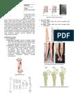 Musculoskeletal Deformity