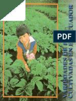Variedades de papa cultivadas en el Ecuador..pdf