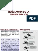 REGULACION-DE-LA-TRANSCRIPCION.pps