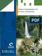 Informe Geoambiental Carabobo Puerto Cabello