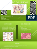 fibras-tejido conjuntivo