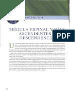 4...Medula y Vias Ascendentes