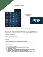 QemtMaladii_cromozomiale_autozomale.doc
