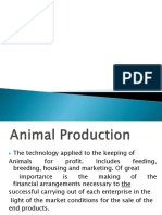 Animal Production and Tools