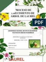 LAUREL Recurso