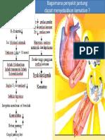 peny jantung forensik