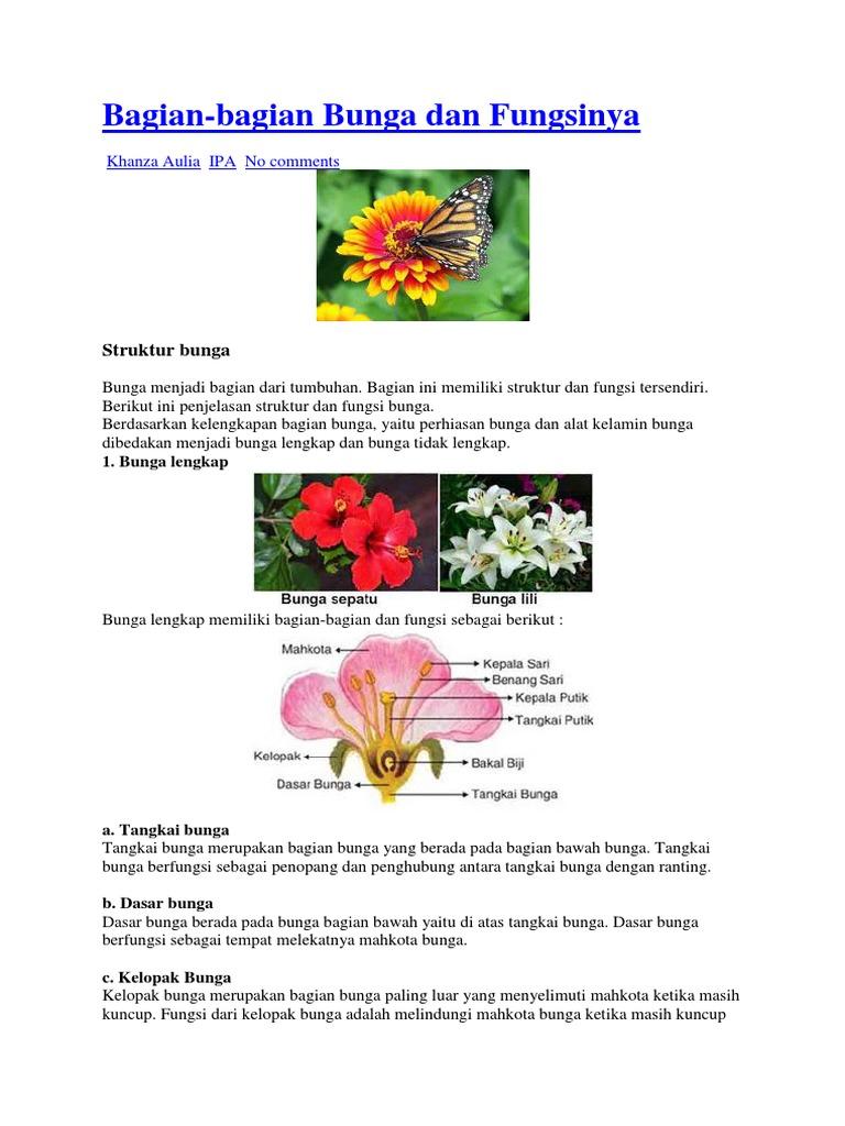 Bagian Bagian Bunga Lili