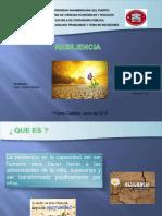 Presentaciòn Proyecto Resilencia