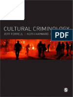 RISKA Ferrell Hayward y Young Cultural Criminology