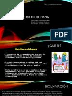Microbios en la mineria.pptx