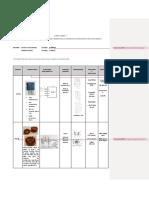 Informe- 1.docx