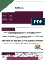 Bacillus anthracis ppt.pptx
