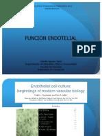 Función endotelial