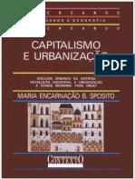Capitalismo e urbanização.pdf