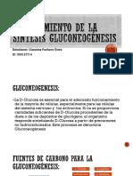 Procedimiento de La Síntesis Gluconeogénesis