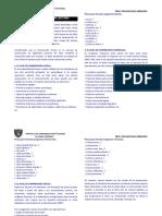 Práctica de Comprensión de Textos 4