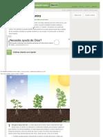 Cómo Cultivar Cilantro_ 12 Pasos (Con Fotos) - WikiHow