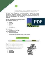 145.pdf