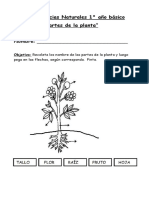 Guía de Ciencias Naturales 1