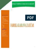 FKZSPDF.pdf