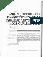 11_6V_Familiasrecursosyproducciones