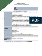 PERFIL DE PUESTO-12.pdf