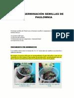 manual paso a paso germinacion paulownia fercoimport.pdf