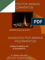 Acidentes Por Peçonhentos-2015