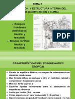 CLASIFICACIÓN  Y ESTRUCTURA INTERNA DEL BOSQUE (COMPOSICIÓN Y CLIMA)