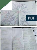 Mapa mental sobre plan y programa de estudios.