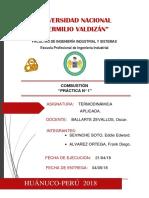 Informe_cachigaga
