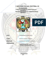 caso-chimbote-final (1).docx