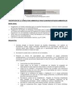 requisitos.doc