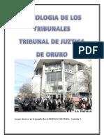 Informe de La Visita Al Tribunal de Juzticia de Oruro